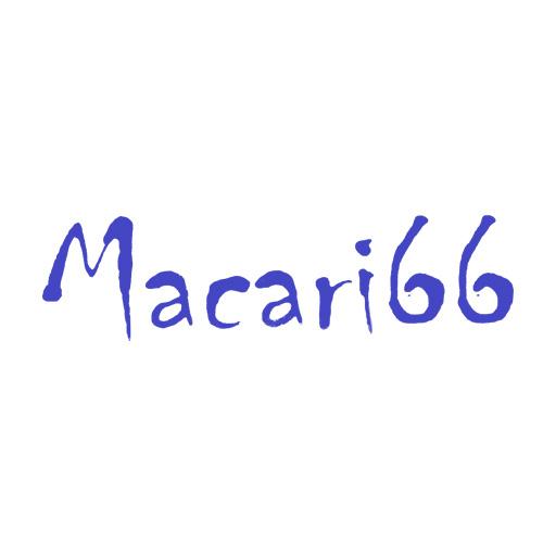 Macari 66